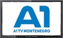 A1 Montenegro logo