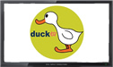 Duck TV live stream