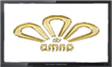 NTV Amna live stream