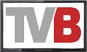 Televizija Banovici logo