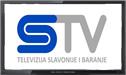 STV live stream